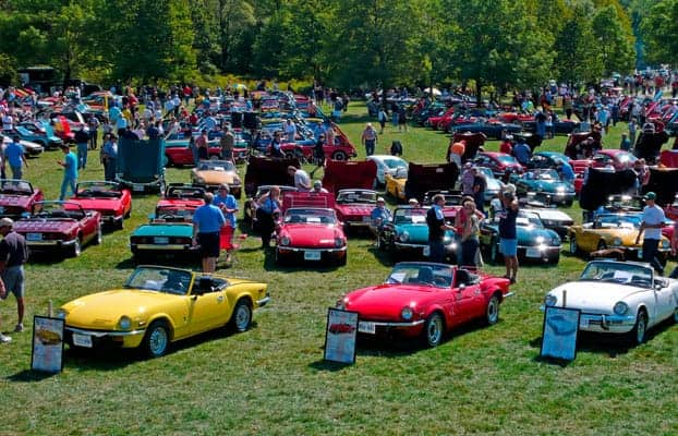Cars on display at last year's event.